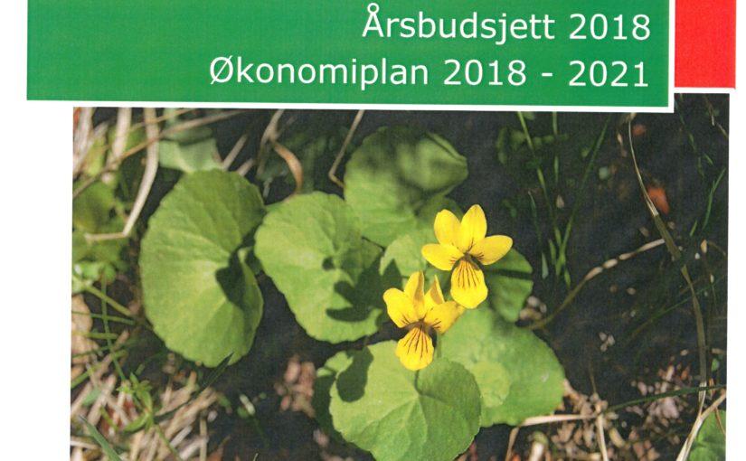 Budsjett 2018 – Økonomiplan 2018 – 2021 – Offentlig ettersyn