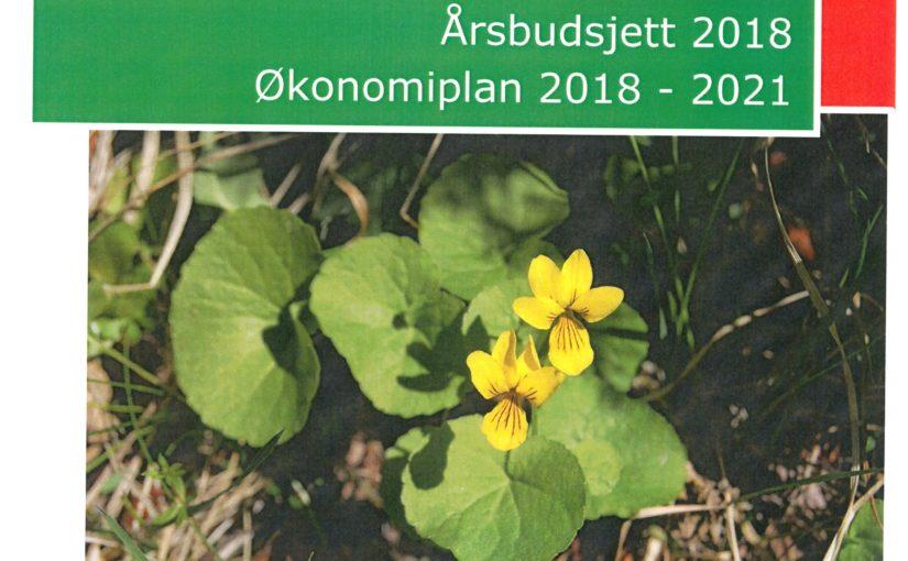 Budsjett 2018, Økonomiplan 2018-2021-Offentlig ettersyn