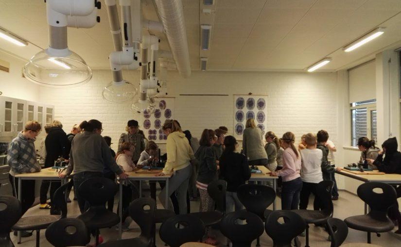Den kulturelle skolesekken på Hov skole