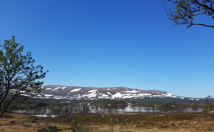 Velkommen til Holtålens stand på boligmesse i Trondheim