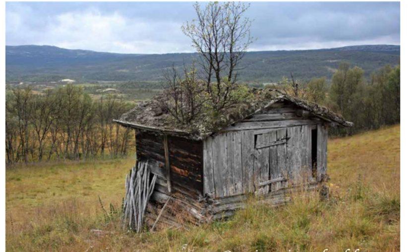 Høring ny «Byggeskikkveileder – Forollhogna nasjonalpark og tilliggende landskapsvernområder»